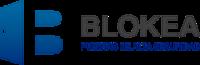 blokeasite-10